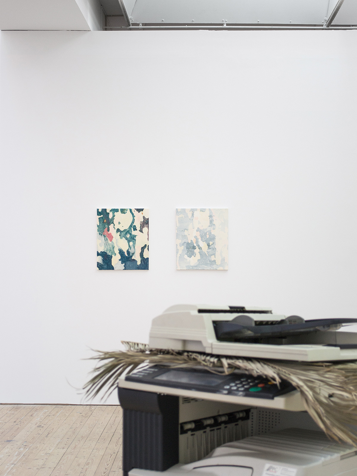 Copycat Underdog (2013), at Malmö Konsthall, Malmö, Sweden. Installation view. The Palm (1912) (2012), Bark I& Bark II 45 x 53 cm, acrylic on canvas.