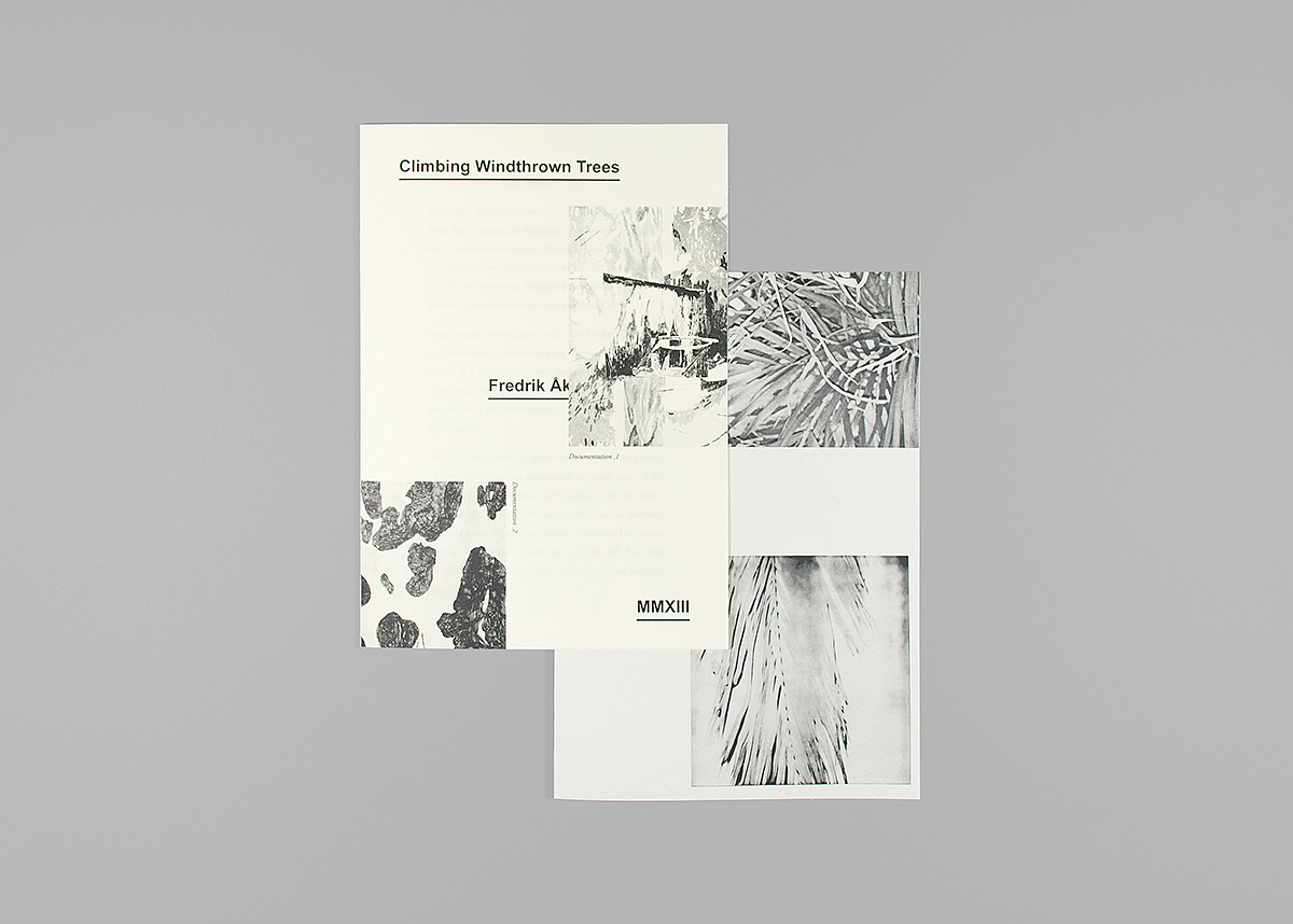 Front, Climbing Windthrown Trees (2013), 14,8 x 21 cm, xerox print, 16 pages + insert, edition of 100.