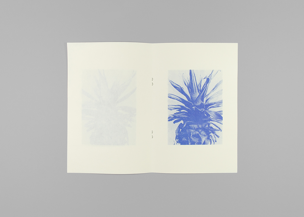 Spread, Portraits (2014), 14,8 x 21 cm, 1 color Risograph print, 16 pages, edition of 50.